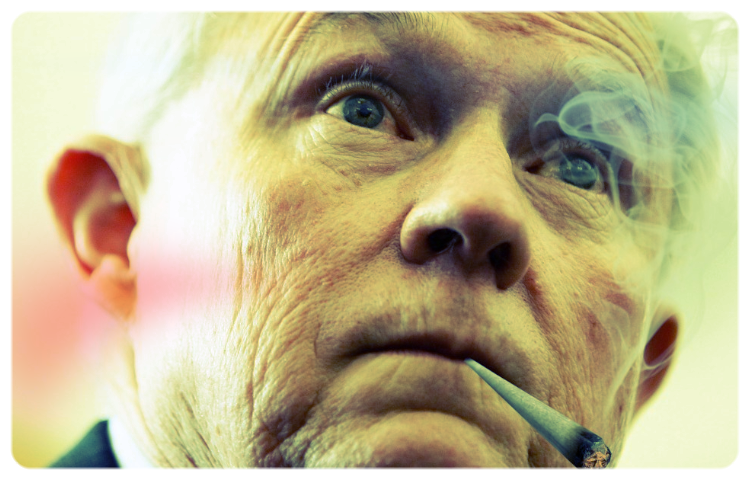 Sessions weed