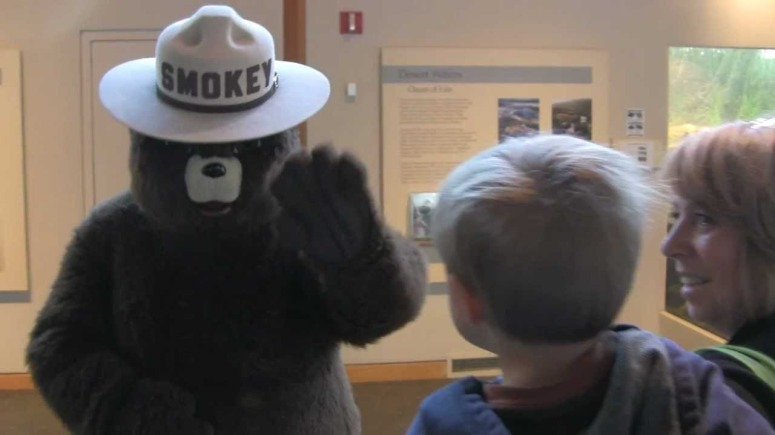 smokey bear and family